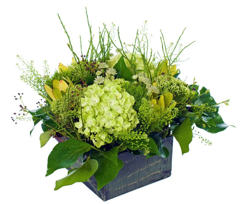 Ramo Nº 25: Hortensia, Tranchelium, Clavel, Astrantia, Thlaspi, Leucodendrum, Verdes, Cajita de madera