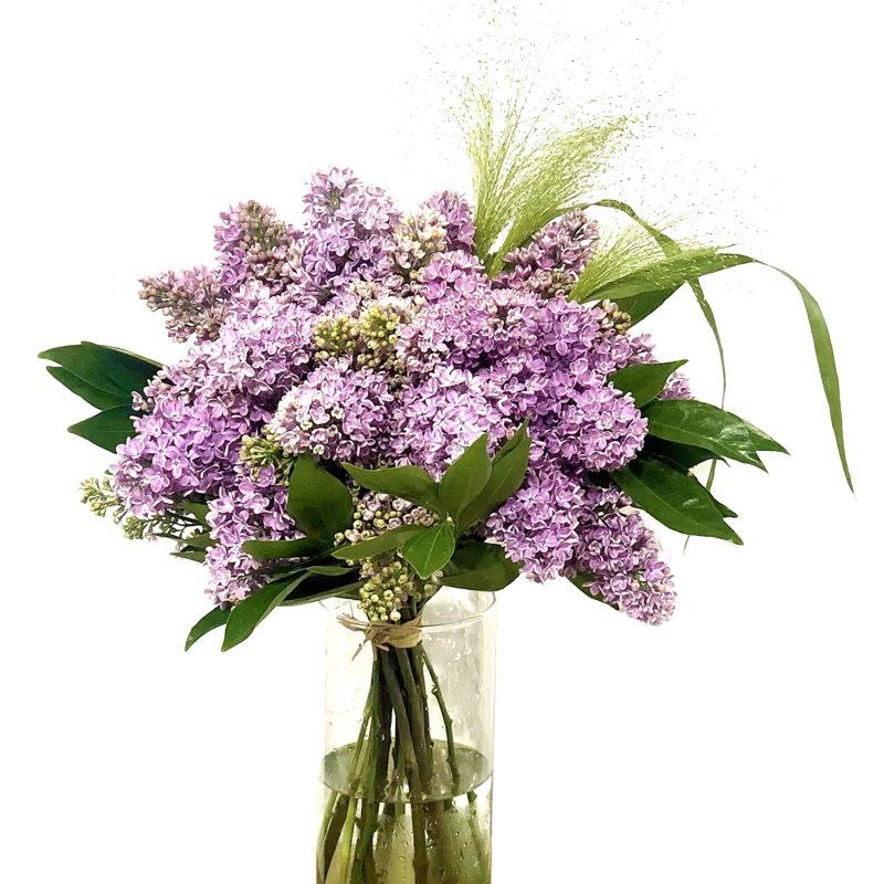 Ramo de lilas