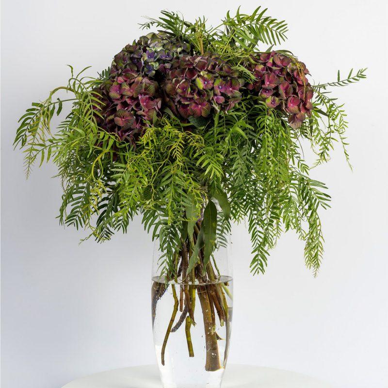 Hortensias verde/morado - Floristería Margarita se llama mi amor
