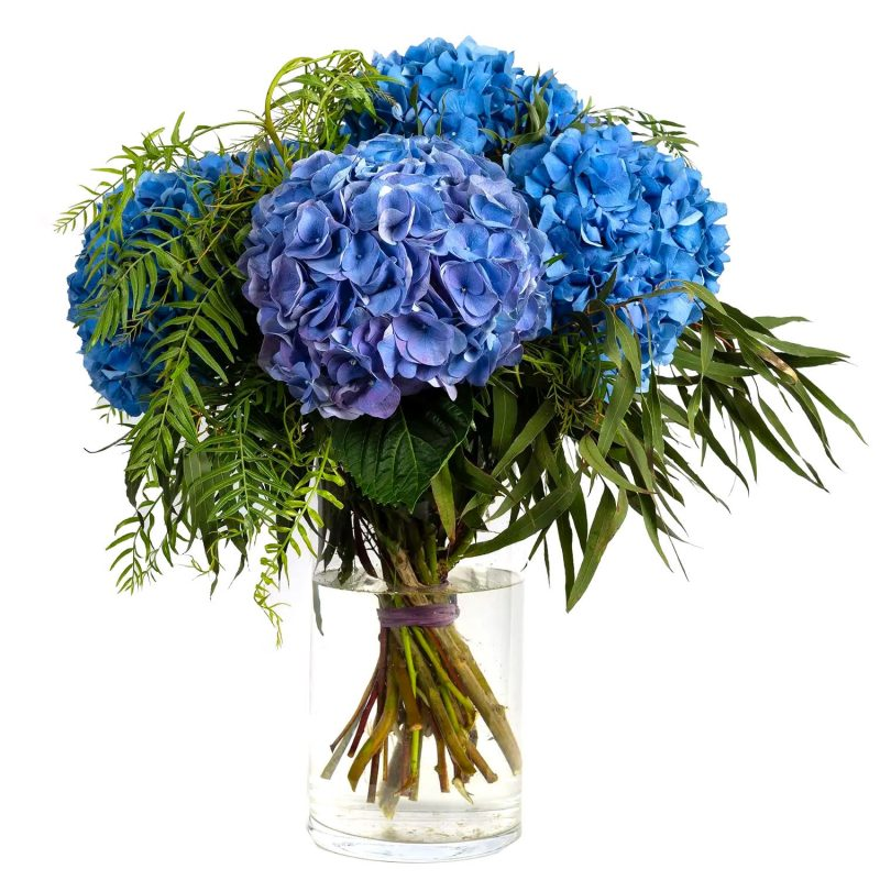 Ramo de hortensias azules - Margarita se llama mi Amor