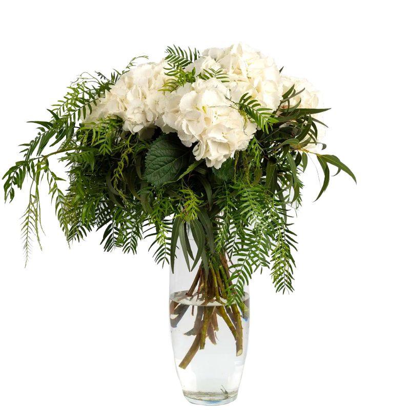 Ramo hortensias blancas - Margarita se llama mi Amor